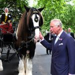 The Prince of Wales launched the Royal Parks charity in Hyde Park