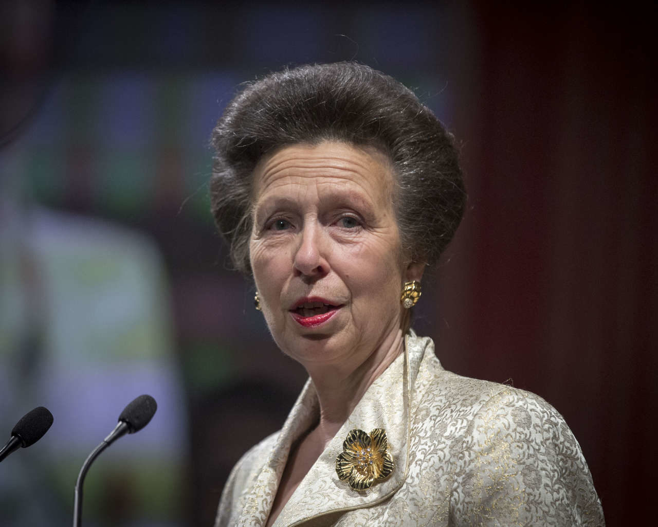 The Princess Royal attends Save the Children UK's Centenary Dinner at Roundhouse
